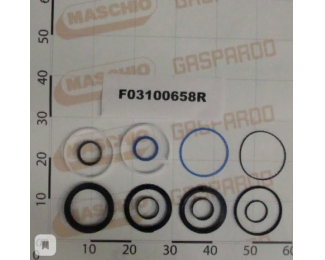 F03100658 Ремкомплект гидроцилиндра M32700343