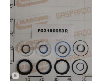 F03100659 Ремкомплект гидроцилиндра M32700344